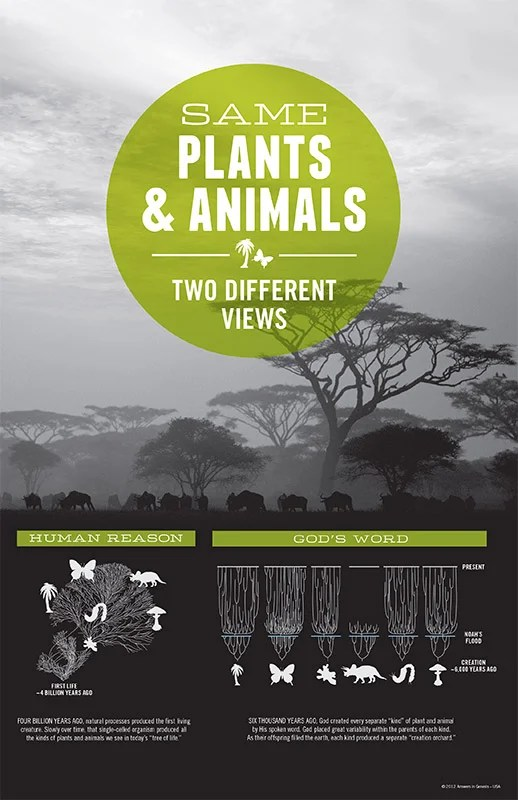 Adobe Reader Photos Same Plants Animals Two Different Views Answers In