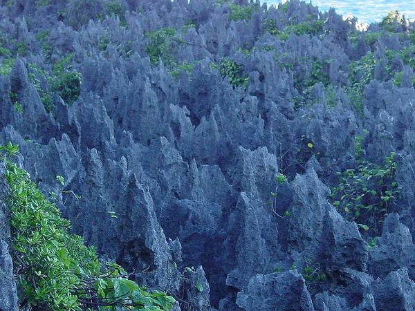 Niue Alofi Niue Atlas Obscura