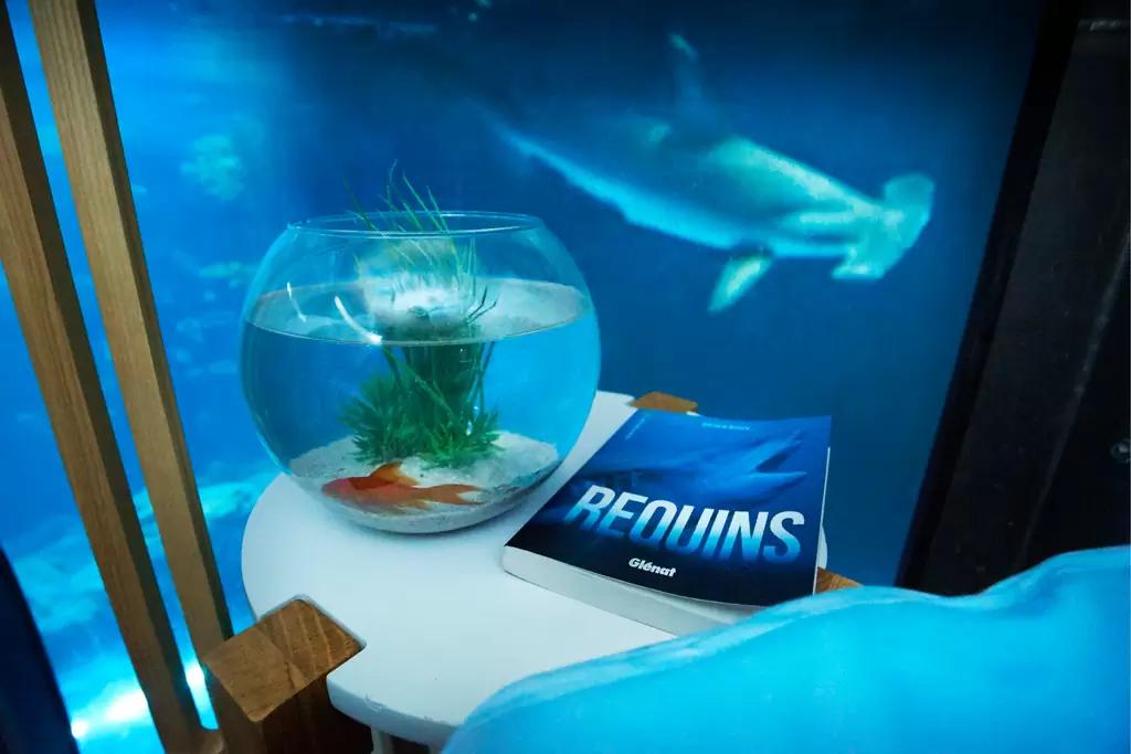 airbnb-quarto-tubaroes3
