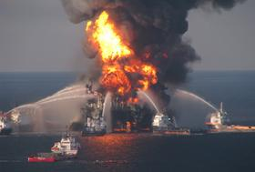 A new study shows that traces of oil have shown up in tiny creatures in the Gulf of Mexico food chain as a result of the Deepwater Horizon rig disaster.