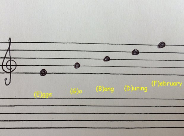 Treble clef notes on lines - These acronyms will help you remember