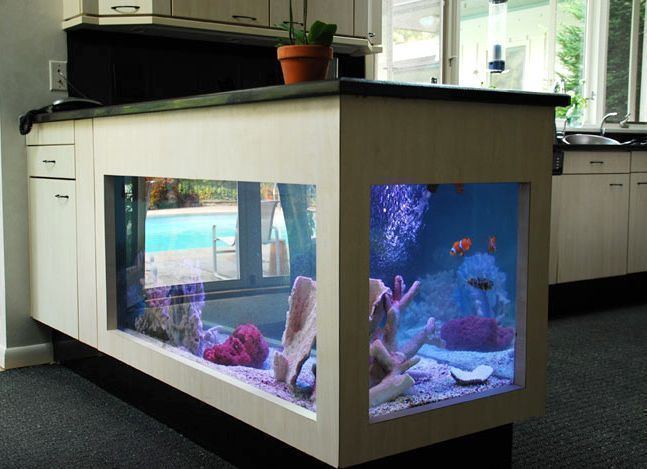 Amazing Ideas For Your Home Aquarium