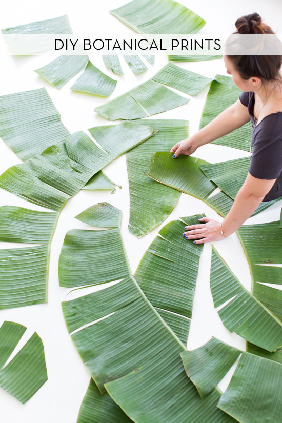 Ikea Gift Card How To: Make Large-scale Botanical Prints On The Cheap
