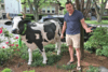 Beloved Baby Cow Statue Rustled From Yard, Leaving Kids Udderly Devastated