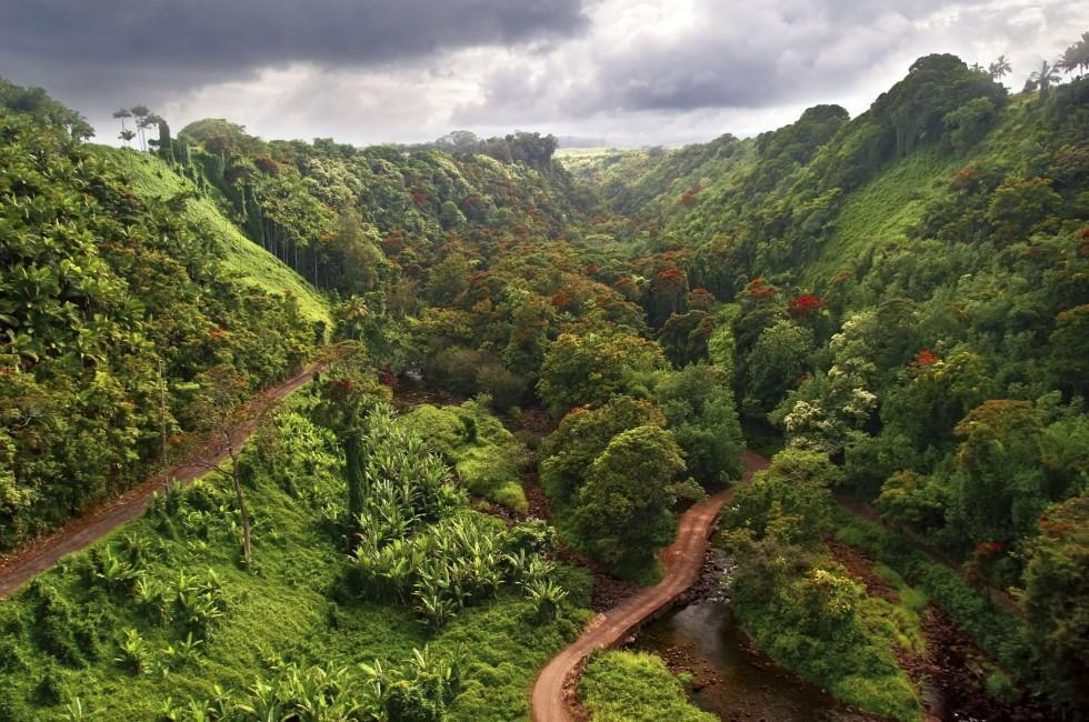 Akaka Falls Wallpaper Big Island Photo Gallery Fodor S Travel
