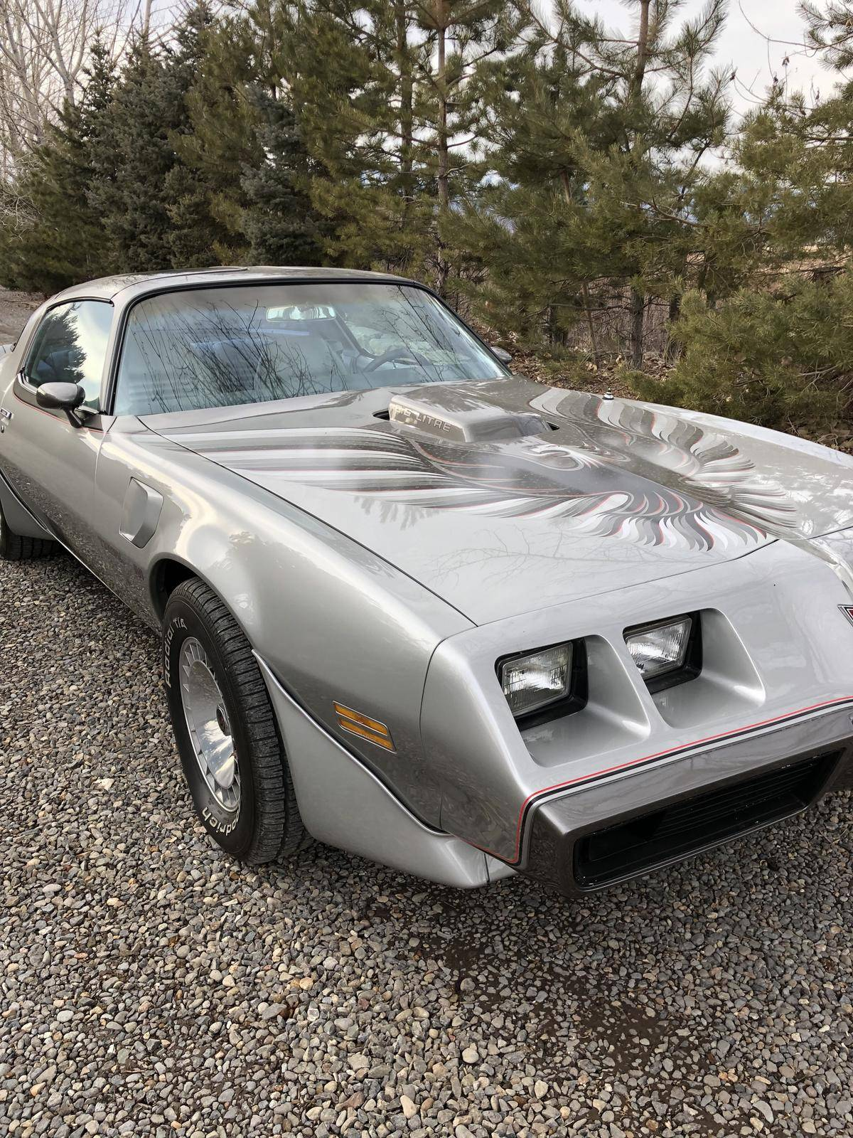 1979 Trans Am Picture 1979 Pontiac Trans Am For Sale 2226656