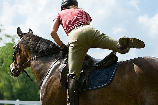 Equine Law Considerations for Lease Agreements HORSE NATION - horse lease agreements