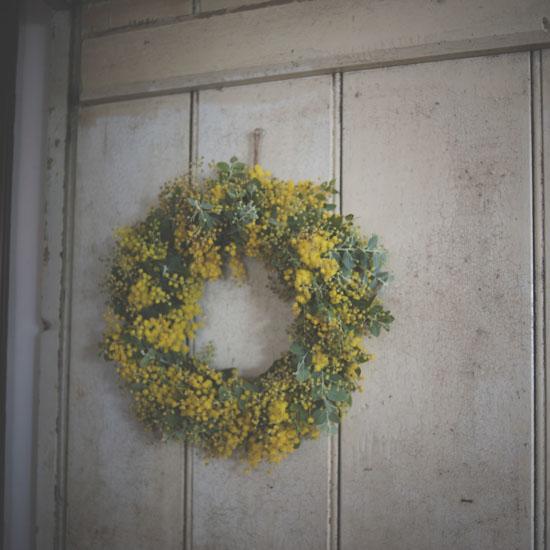 dryflower_067