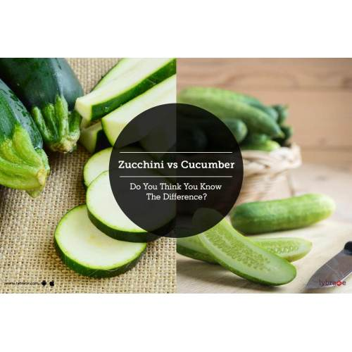 Medium Crop Of Zucchini Vs Cucumber