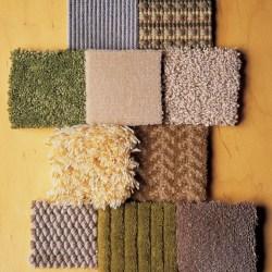 Corner What To Know Before Buying Carpet Martha Stewart Nylon Vs Polyester Carpet 2017 Nylon Or Polyester Carpet houzz-03 Nylon Vs Polyester Carpet