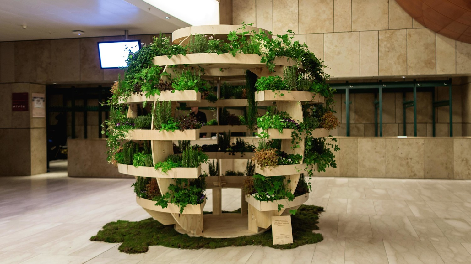 Cool Plants For Your Room Build Your Own Spherical Plant Room With Free Blueprints