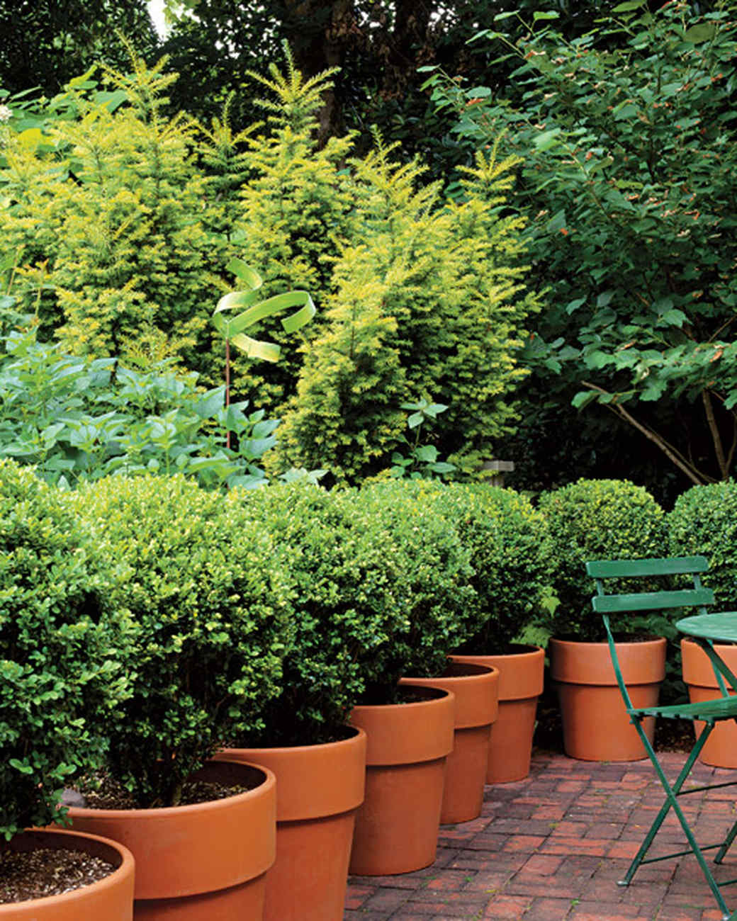 Back Garden Ideas 60 Great Ideas For The Garden Martha Stewart