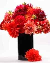 Red Flower Arrangements   Martha Stewart