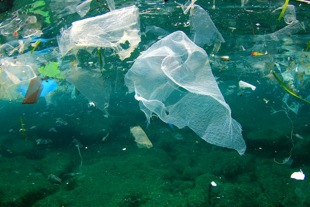 Plastic Pollution Solutions 10 Ways To Reduce Plastic