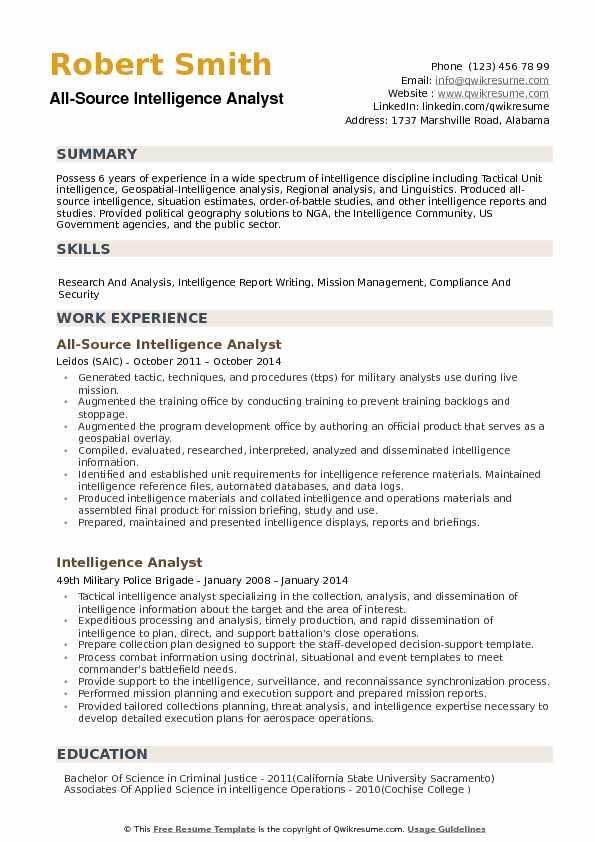 nsa resume template