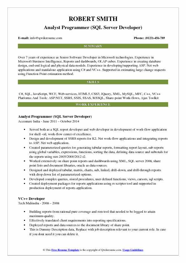Analyst Programmer Resume Samples QwikResume - senior programmer job description