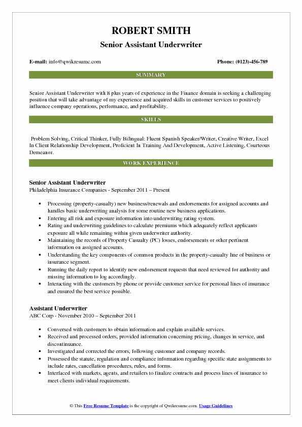 resume summary for underwriter