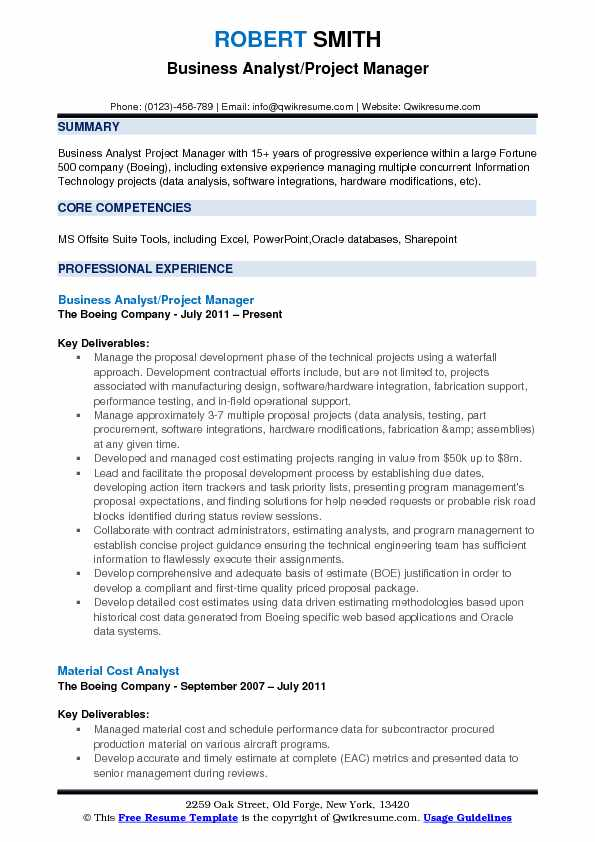Business Analyst Project Manager Resume Samples QwikResume - sample technology manager resume
