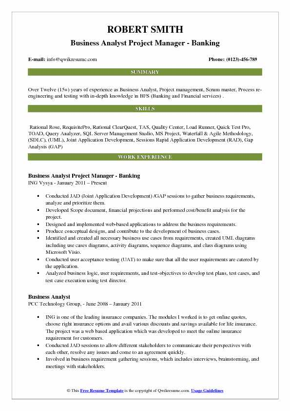 Business Analyst Project Manager Resume Samples QwikResume - Project Manager Resume Format