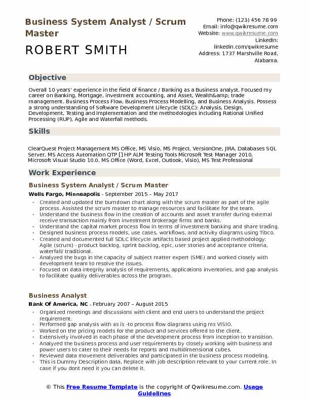 Business System Analyst Resume Samples QwikResume - Master Resume Example