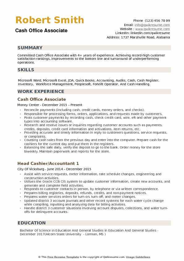 accounting associate resume - Artij-plus