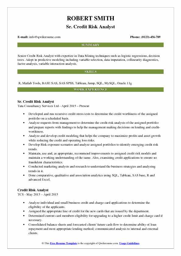 risk analyst resume - Maggilocustdesign