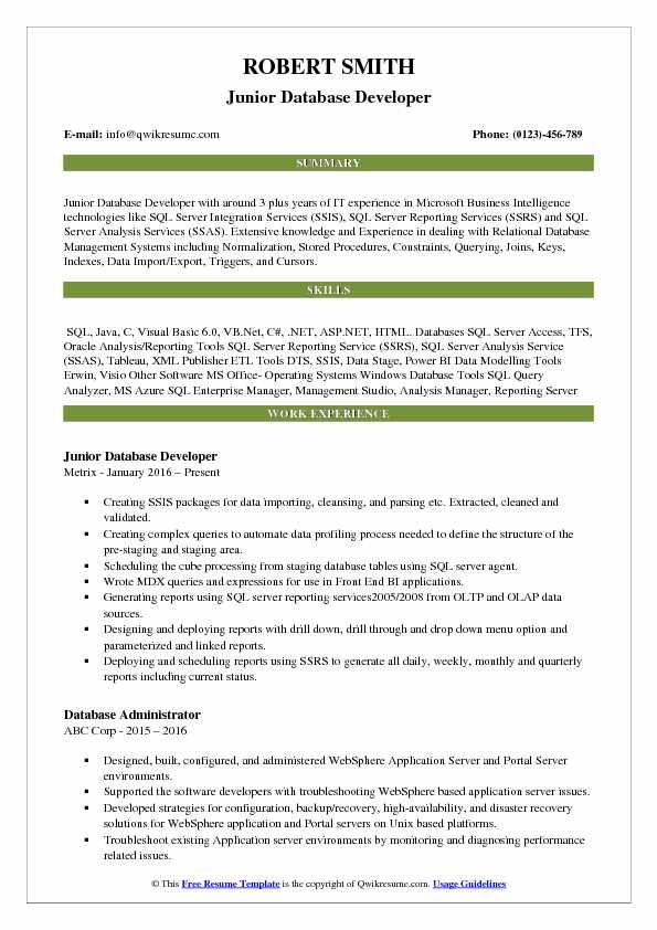 Database Developer Resume Samples QwikResume