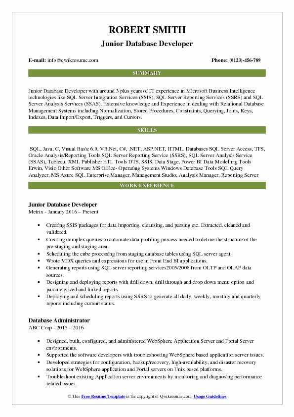 junior database developer resume sample