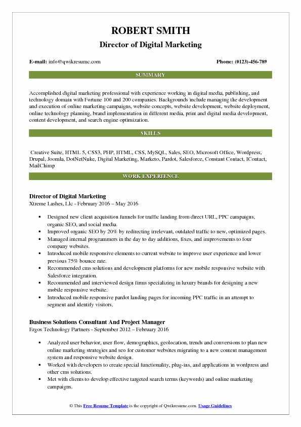 Director of Digital Marketing Resume Samples QwikResume
