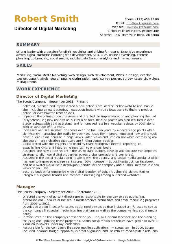 marketing resume summary
