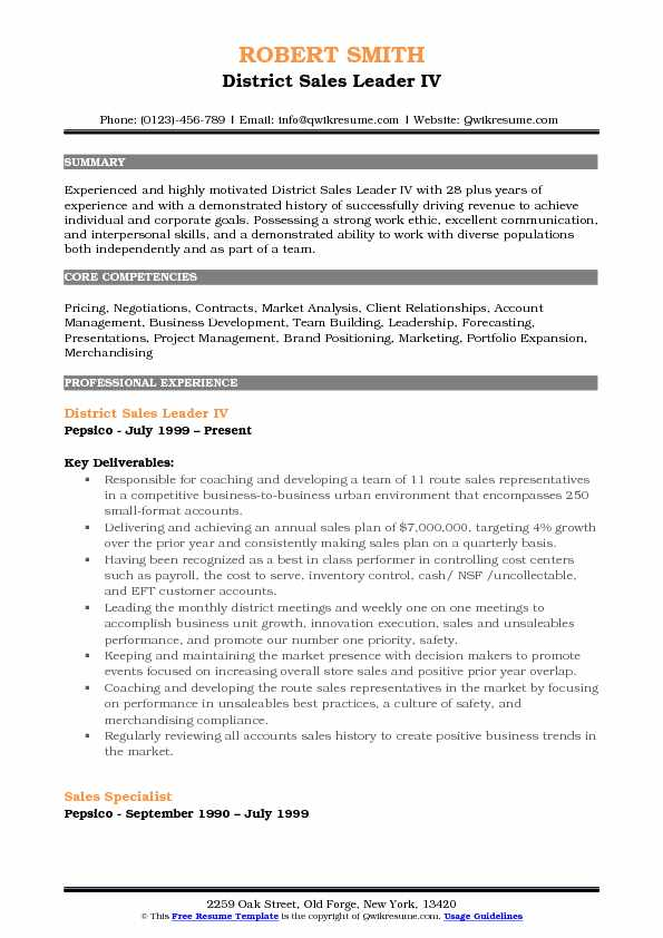 District Sales Leader Resume Samples QwikResume