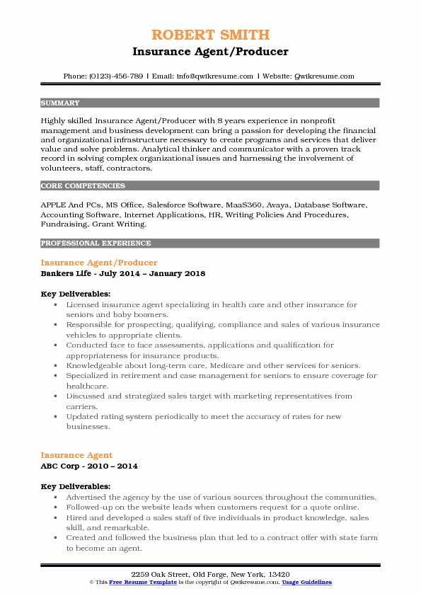 resume description summary