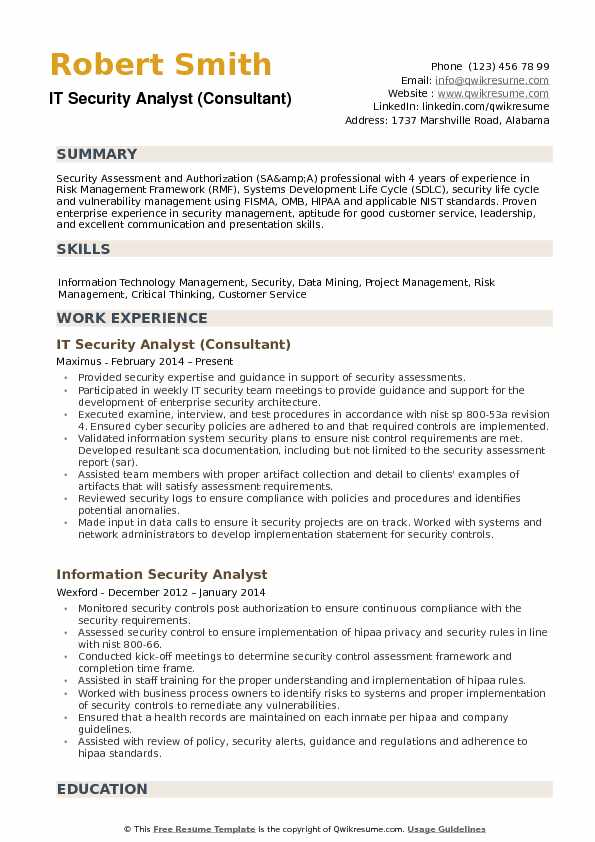 resume information technology analyst