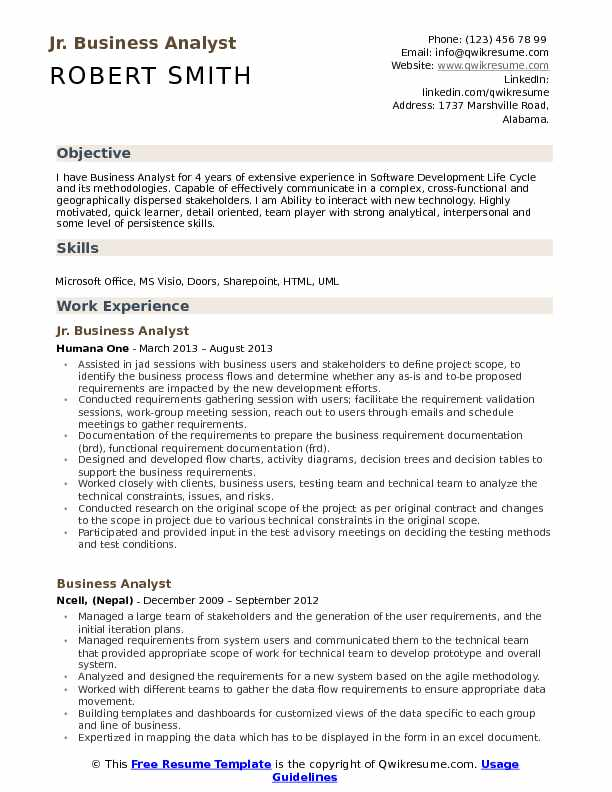 resume summary examples business analyst