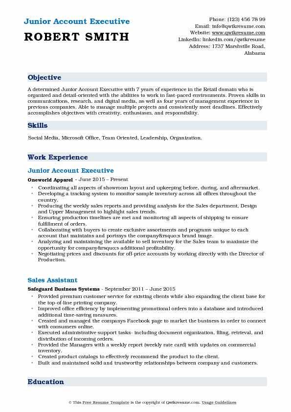 junior executive resume - Canasbergdorfbib