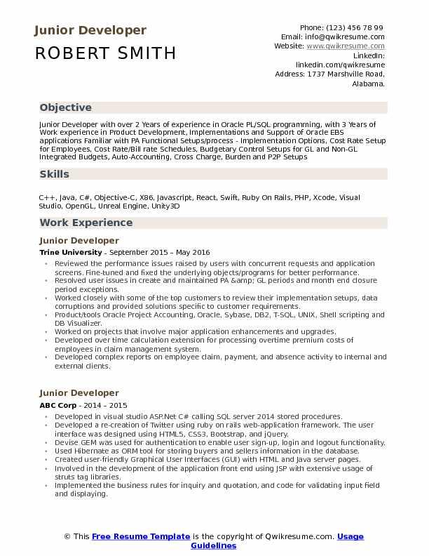 Junior Developer Resume Samples QwikResume