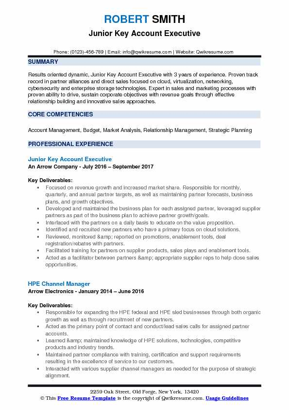 pdf sales manager cybersecurity cv