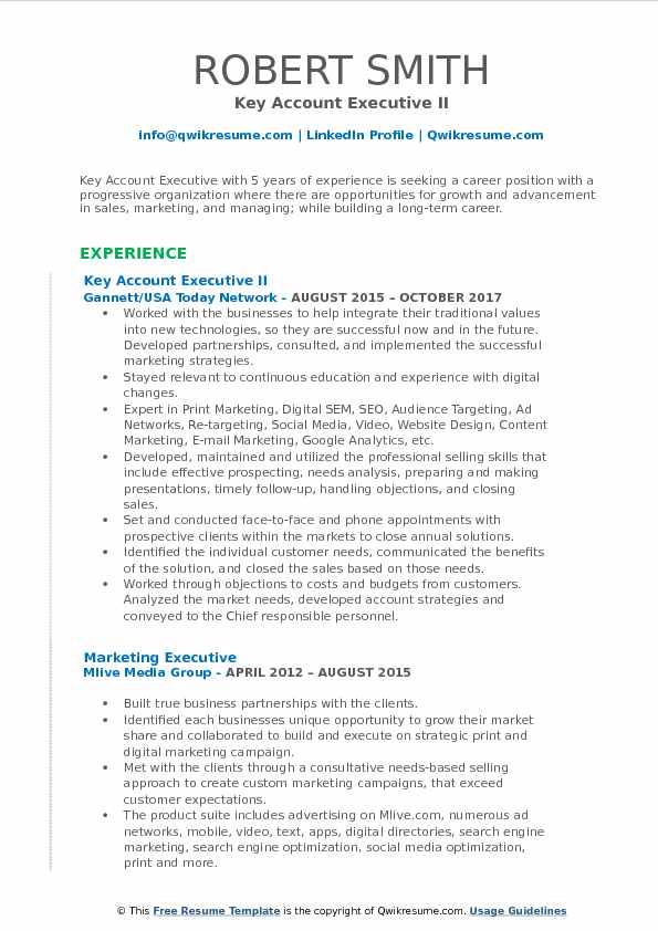 Key Account Executive Resume Samples QwikResume - resume format for accounts executive