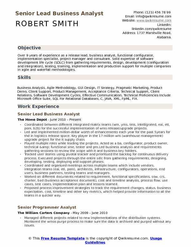 lead business analyst resume sample