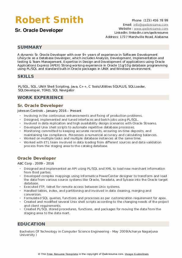 oracle developer cv