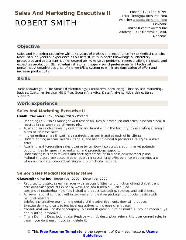 Sales and Marketing Executive Resume Samples QwikResume - sales support resume