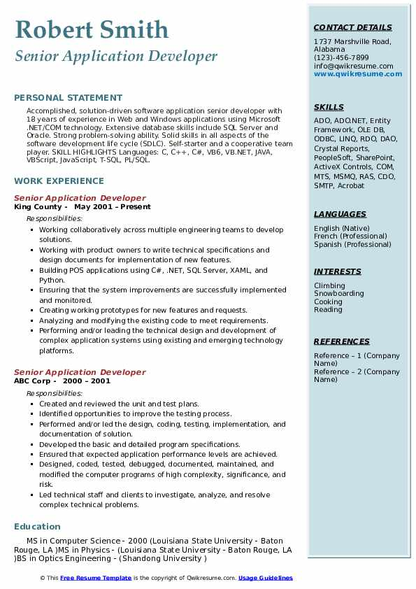sample resume for vb6 developer