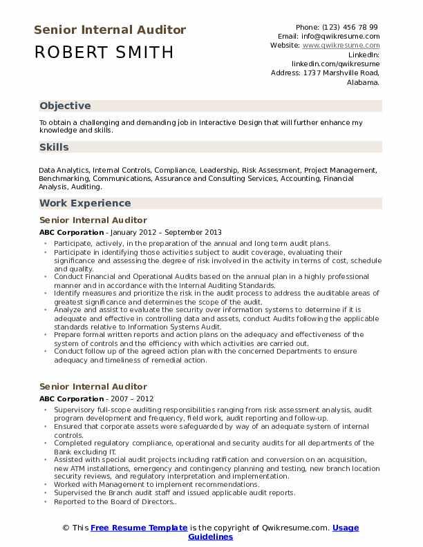 audit resume template utd