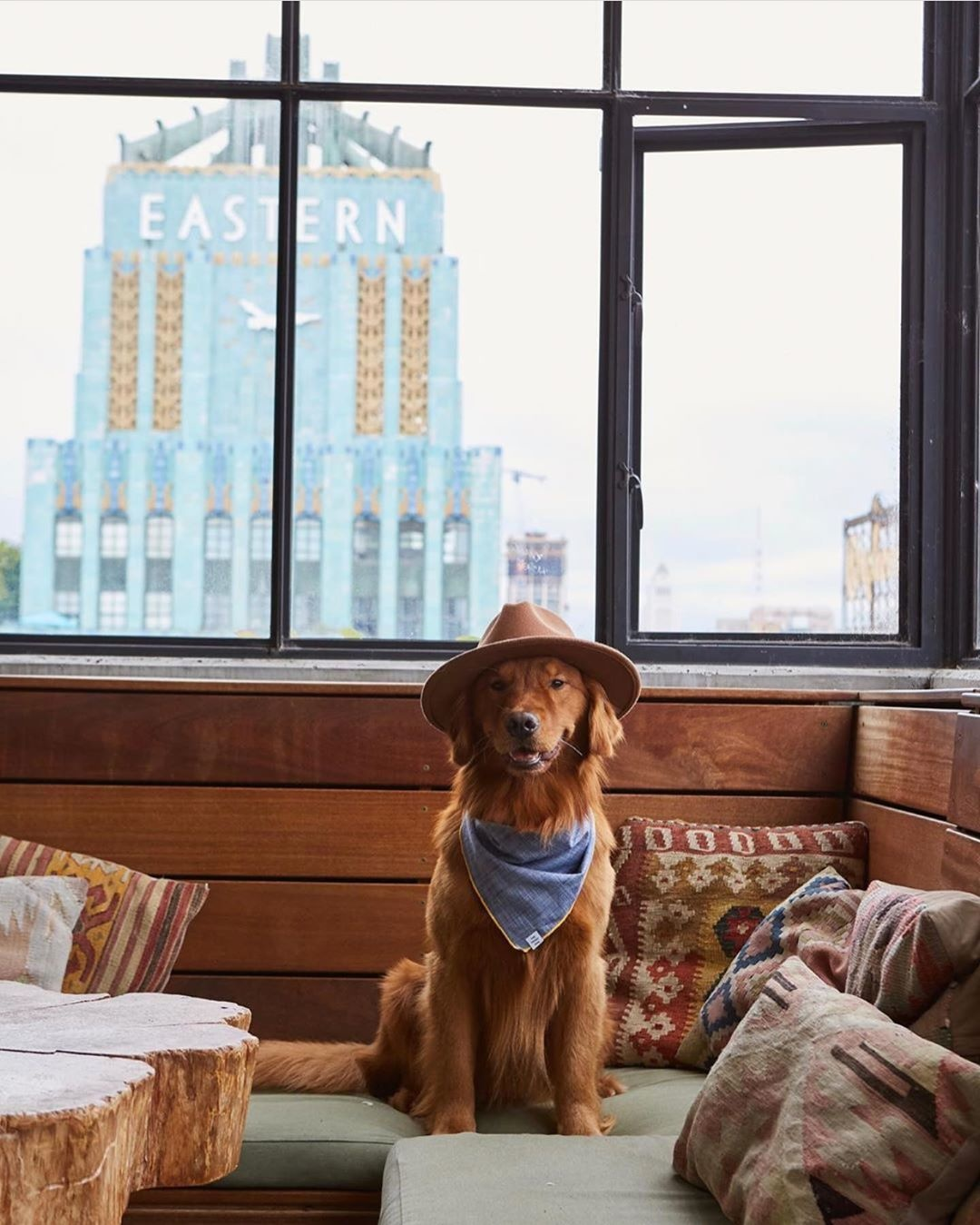 14 Dog Friendly Hotels Down The California Coast 7x7 Bay Area