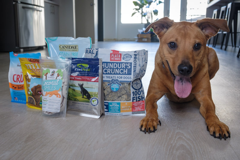 The Best Dog Treats for 2018 Reviews