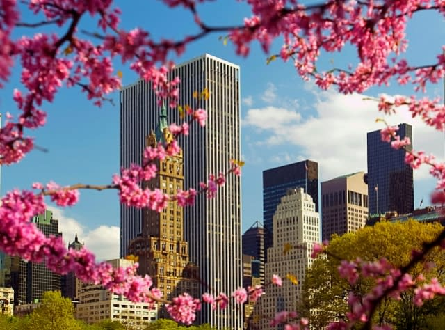 Spring and Summer in New York New York Seasons New York Weather