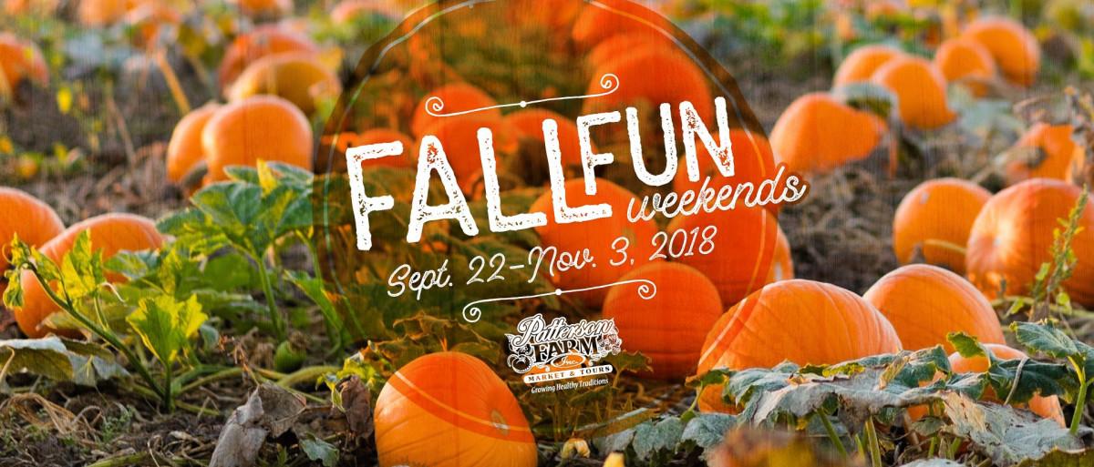 Fall Fun at Patterson Farm