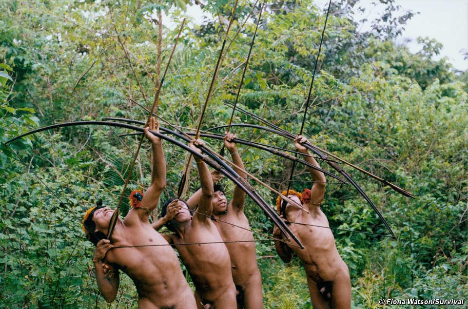 naked jungle tv show