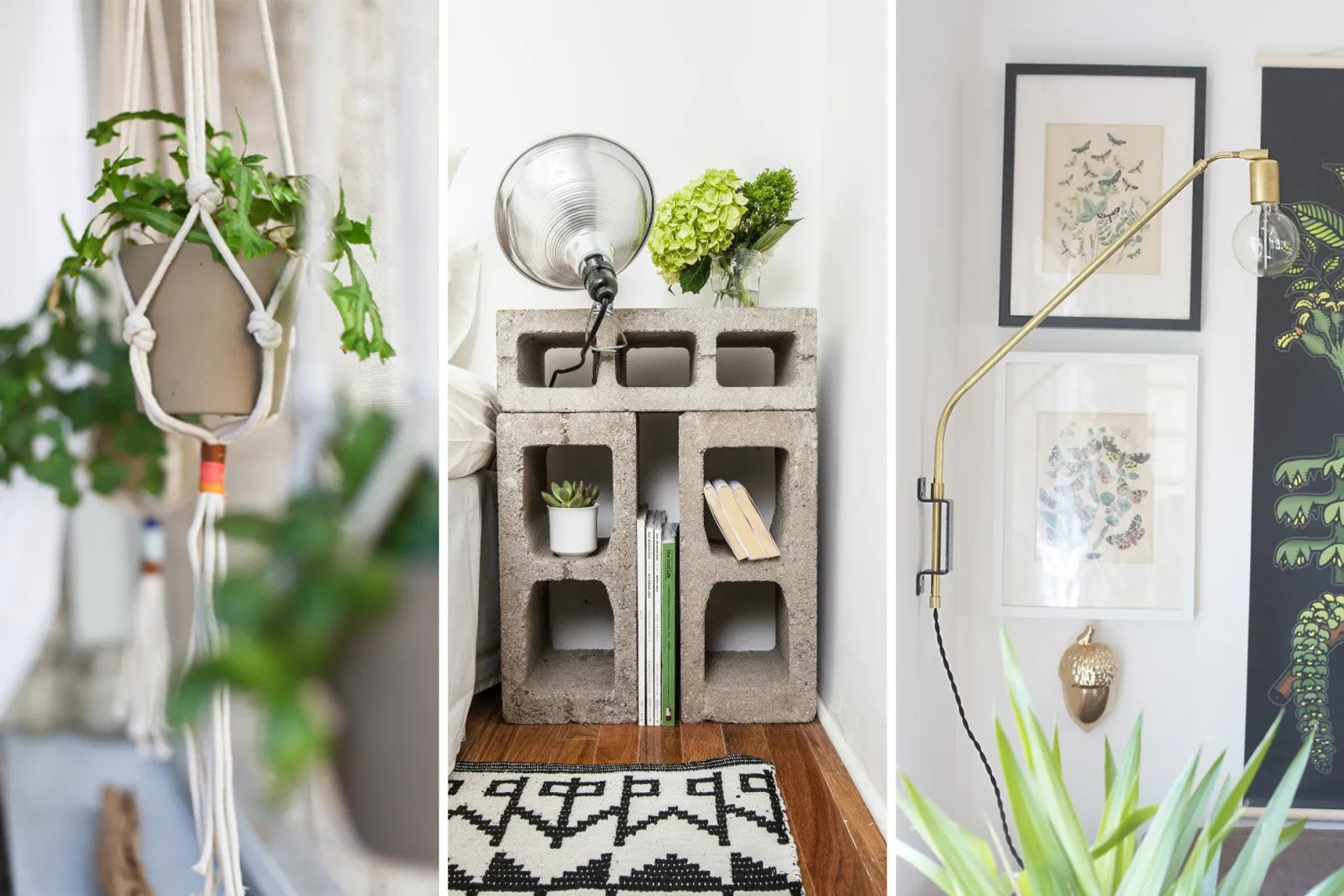 Cool Plants For Your Room 25 Creative Ways To Decorate Your Dorm Room Diy Budget