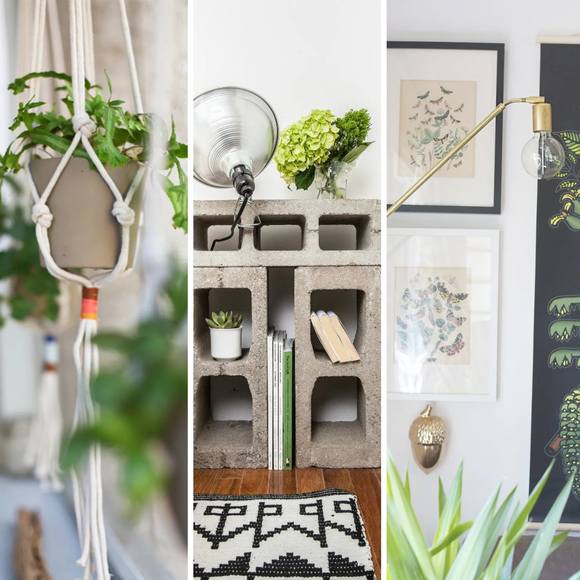 Cool Plants For Your Room Ways To Decorate Your Home For Cheap